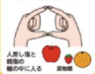 手ばかり法果物
